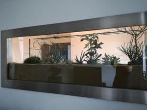 Aquarium mit Pflanzen dekorieren
