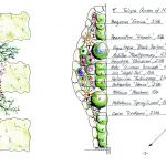 Gartendesign Pflanzplan