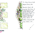 Pflanzplan Gartenplanung Wohnungsgarten