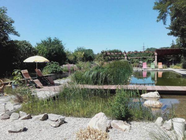 wassergarten schwimmteich gartengestaltung