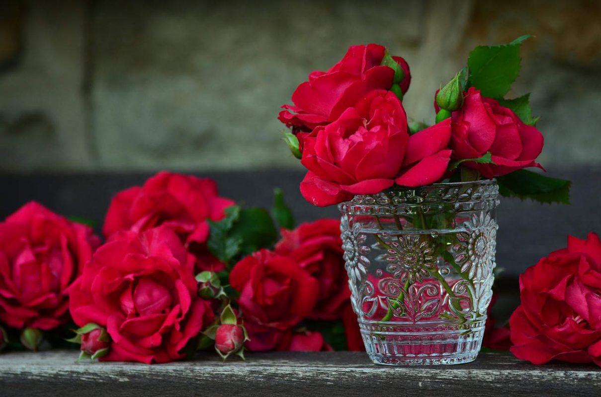 duftgarten rosengärten flaechenlust