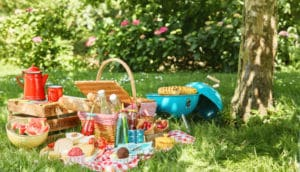 gartenfest picknick