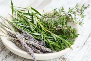 küchenkräuter rosmarin lavendel thymian
