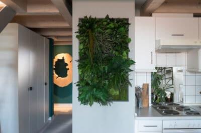 Pflanzenbild Wandbild Gartenshop