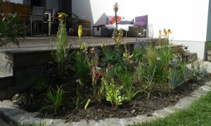 beetplanung staudengarten flaechenlust