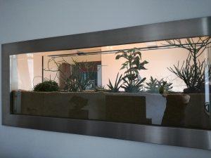 zimmerpflanzen indoor-garden