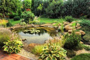 Biotop wassergarten Gartenteich