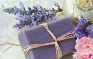 duftgarten rose lavendel