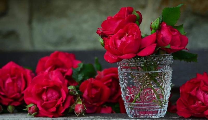 duftgarten rosengarten