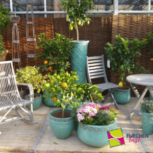 Balkon Pflanzen Tröge