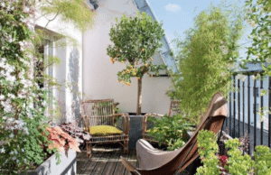 tipps für den balkongarten flaechenlust gartenblog