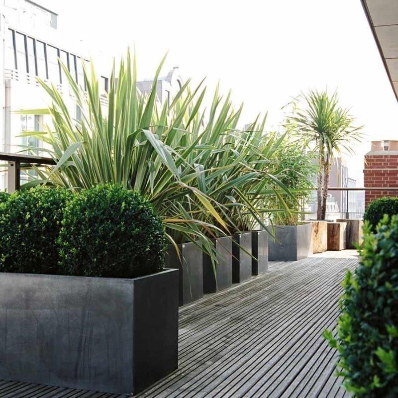 dachgarten pflanzen tröge