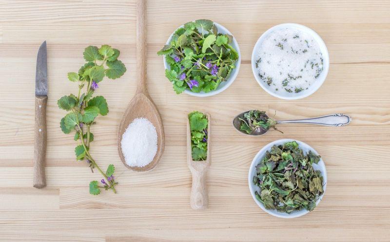 küchenkräuter urban gardening