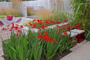 garden staging gartengestaltung modern