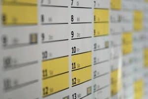 garten planen fragen und organisation
