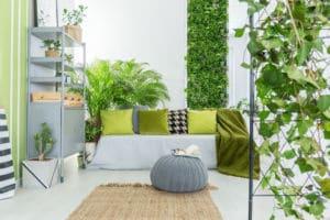 zimmerpflanzen grüne Wand Innenraumbegrünung