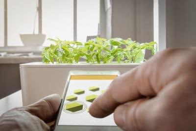 Neuer Gartentrend Smart Indoor Garden