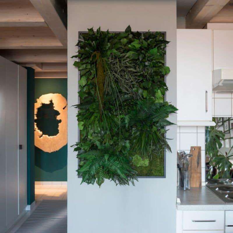 grüne pflanzen bild