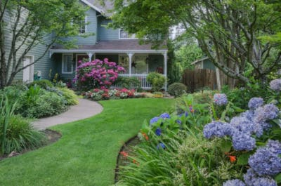 moderner garten hortensien gräser