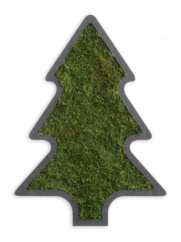 Weihnachtsbaum Moosbild Detail