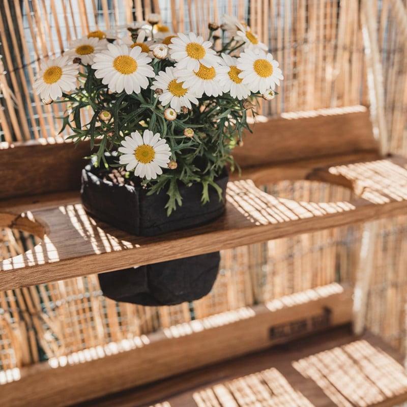 Pflanzsack für Balkon Dachterrasse